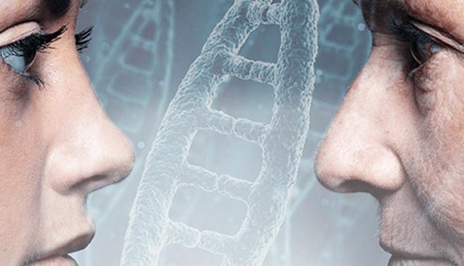 DNA ja sukututkimus: Miksi testauttaa iäkkäämpiä sukulaisia?